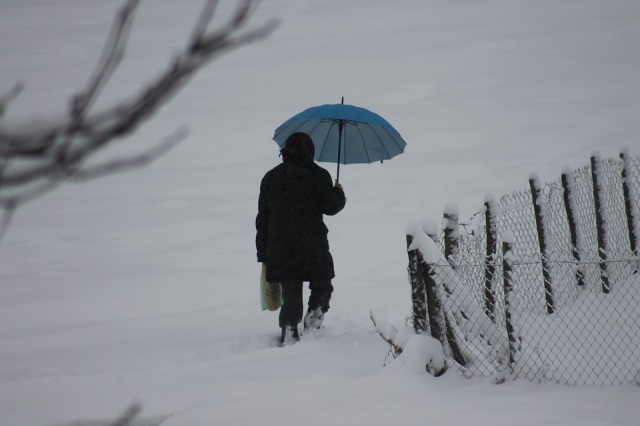winter-629759_960_720