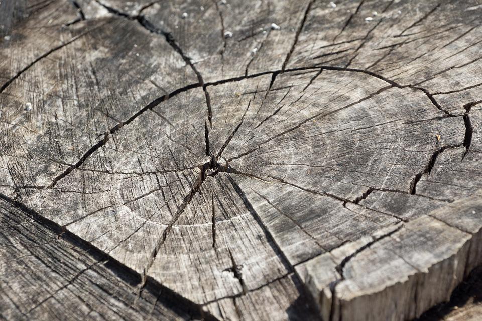 wood-366735_960_720